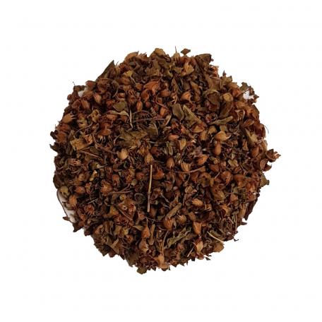 Plante ayurvédique - Aussi appelé Basilic Sacré