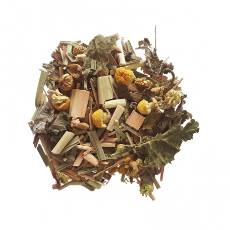 Tisane végétale - Immuno-boost