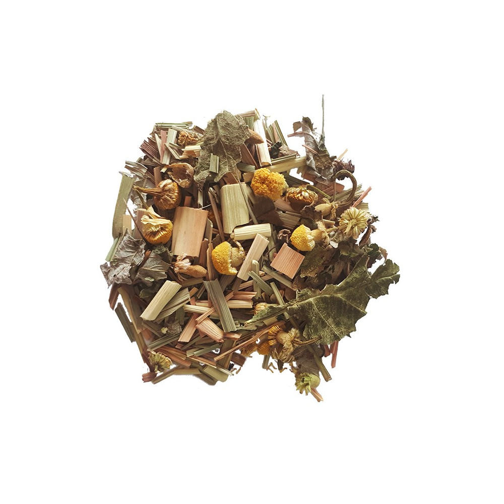 Symphonie bien être - Tisane végétale - Immuno-boost Colors of Tea