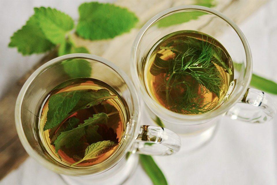 infusions thé dans tasses translucides