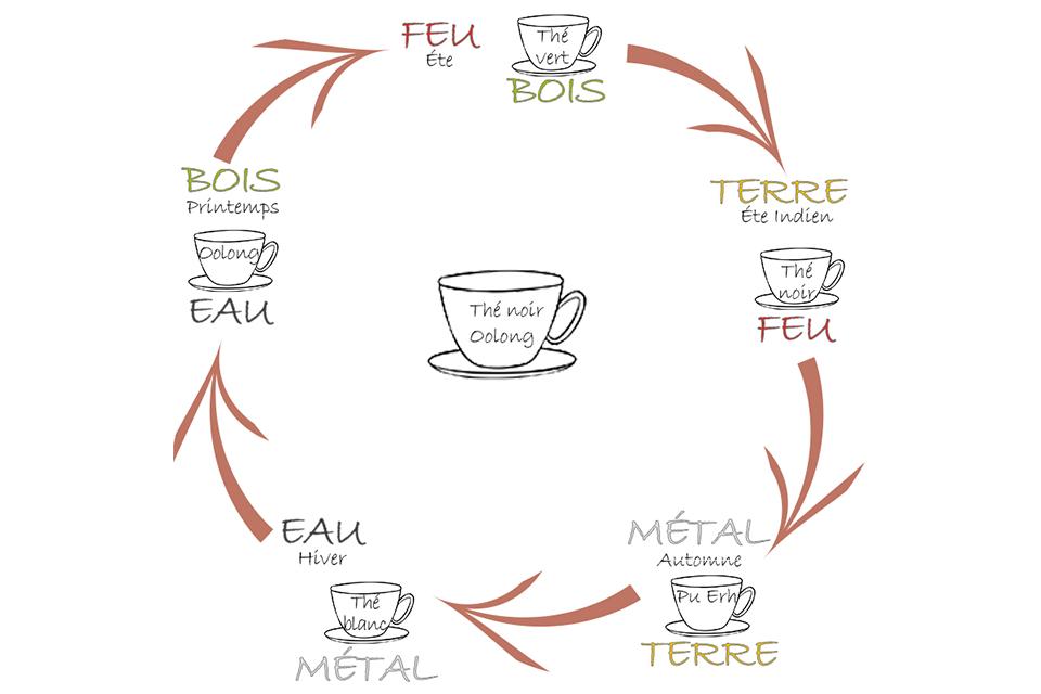 les 5 éléments et leur thé associés, autour d'une tasse