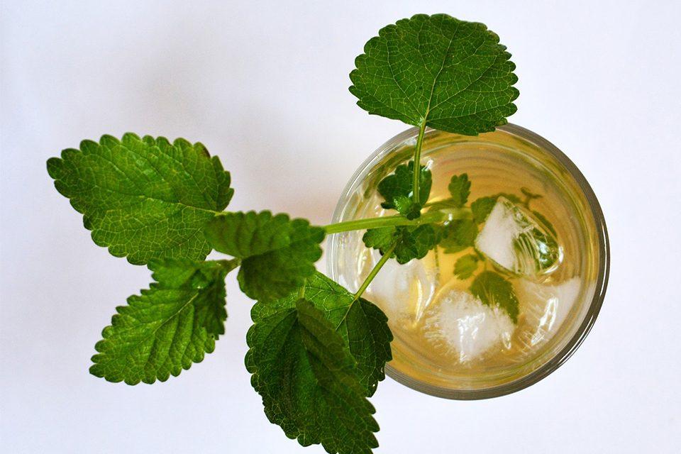 feuilles de menthe dans verre de thé glacé