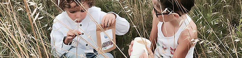 Colors of Tea • Thés et tisanes pour enfants